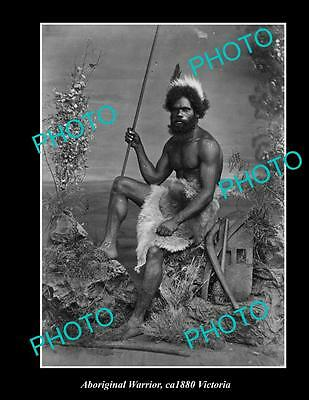 OLD LARGE HISTORIC PHOTO OF NSW ABORIGINAL, YOUNG WARRIOR IN HEAD DRESS c1880 1