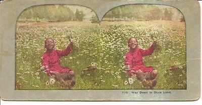"""Antique Black Americana Stereoview """"Way Down in Dixie Land"""" Young Child"""