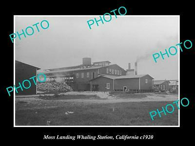 OLD LARGE HISTORIC PHOTO OF MOSS LANDING CALIFORNIA, THE WHALING STATION c1920 1
