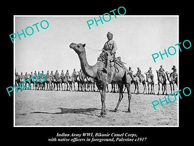 OLD HISTORIC PHOTO OF INDIAN ARMY WWI, THE BIKANIR CAMEL CORPS, PALESTINE c1917