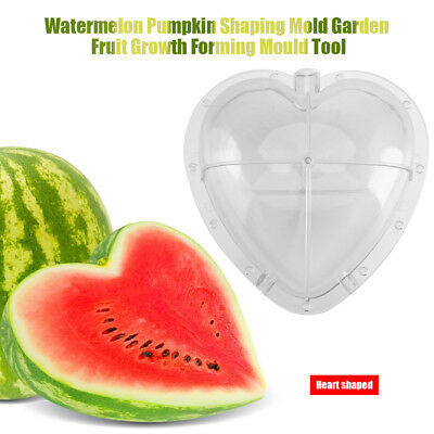 Square/Heart-shaped Watermelon Mold For Growing Square Heart Forming Mould AF