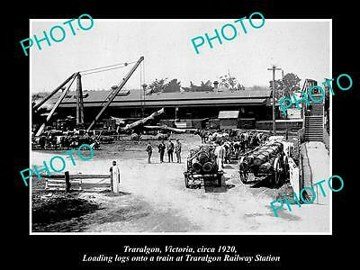 OLD LARGE HISTORIC PHOTO OF TRARALGON VICTORIA, LOADING TIMBER ST STATION c1920