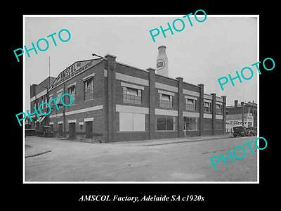 OLD HISTORIC PHOTO OF ADELAIDE SA, AMSCOL MILK & DAIRY Co FACTORY, c1920s