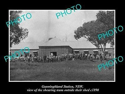 OLD LARGE HISTORIC PHOTO OF GUNNINGBLAND STATION SHEARING TEAM & WOOL SHED c1890