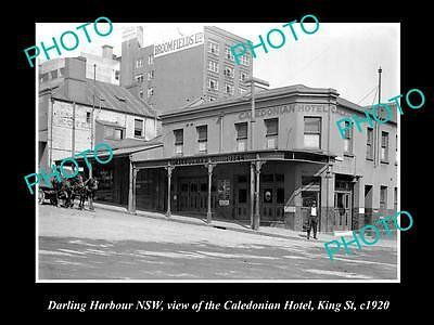OLD LARGE HISTORIC PHOTO OF DARLING HARBOUR NSW, CALEDONIAN HOTEL c1920s