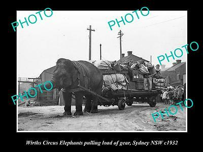 OLD LARGE HISTORIC PHOTO OF WIRTHS CIRCUS ELEPHANT PULLING THE WAGON c1932