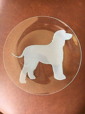 Nice!  ETCHED IRISH WATER SPANIEL GLASS PLATE ~ 8 1/4 IN