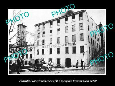 OLD LARGE HISTORIC PHOTO OF POTTSVILLE PENNSYLVANIA, THE YUENGLING BREWERY c1900