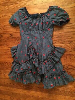"Blue Swiss Dot Embroidered Floral Rockabilly Square Dance Dress 46"" Bust/35""W"