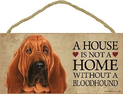 ***a House Is Not A Home Without A Bloodhound Wood Pet Sign/plaque***