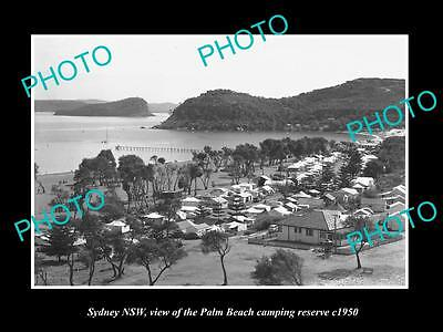 OLD LARGE HISTORIC PHOTO OF SYDNEY NSW, VIEW OF THE PALM BEACH CAMP c1950