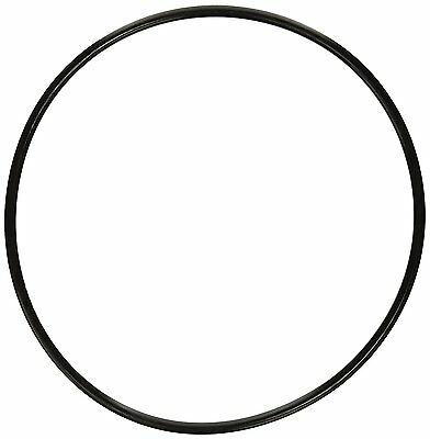Pentair 87300400 Body O-Ring Replacement Pool and Spa Filter