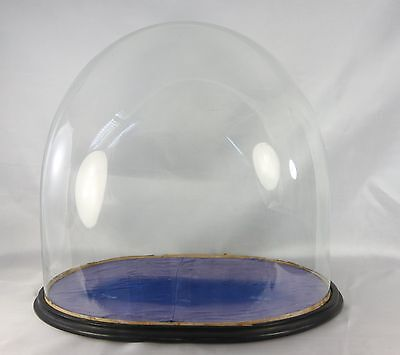 "Large Antique Glass Dome & Base 19.25"" X 14.50"" Height 18.50"" Clock Taxidermy"