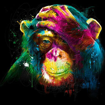 Paint By Number Kit Colorful Monkey Art DIY Picture 40x40cm Canvas Small Parts