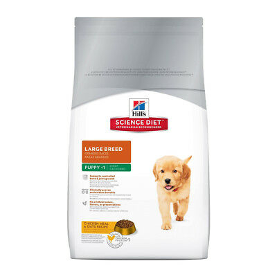 Hill's Science Plan Cane Puppy Large Breed Al Pollo 11 kg