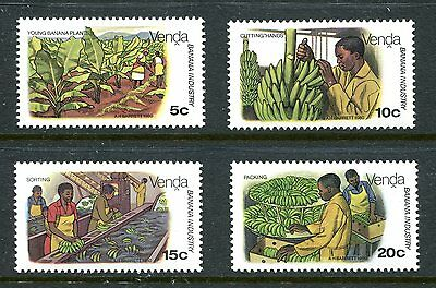 Venda 1980 Banana Cultivation MNH