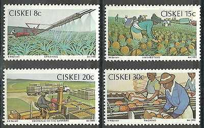 Ciskei 1982 Pineapple Industry MNH