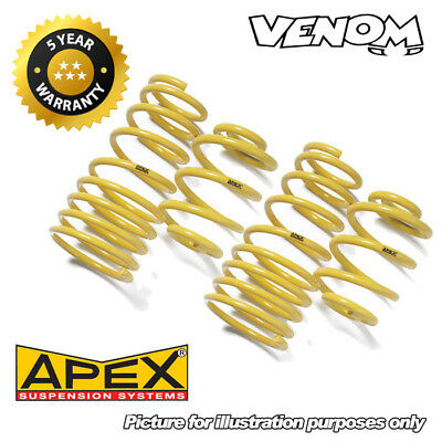 Apex 30mm Lowering Springs for BMW 5 Series E60 Saloon 525D/530D (03-) 20-2210