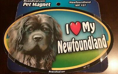 "Scandical I Love My newfoundland Laminated Car Pet Magnet 4"" x 6"""