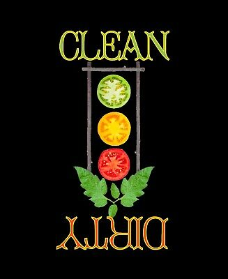 METAL DISHWASHER MAGNET Image Of Tomato Stoplight Clean Dirty Dishes MAGNET X