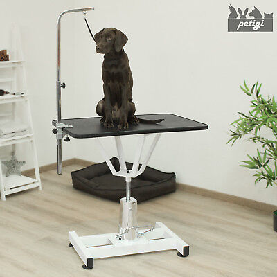 XL Table De Toilettage Cisaillement Table Animal Chien Hydraulique Petigi
