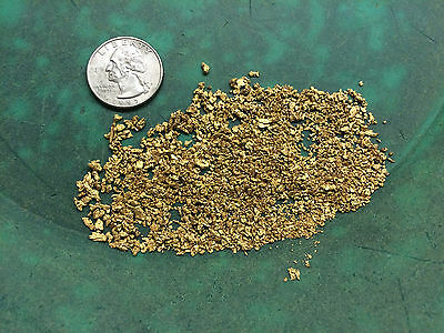 Rich GOLD PAYDIRT by the pound! Now offering PREMIUM PAYDIRT! panning alaska