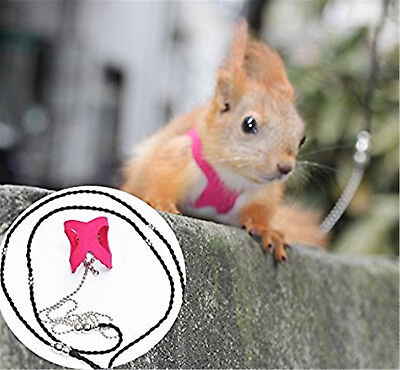 Pink Squirrel Vest Harnesses Collars, 180cm 71 inch Anti-bite Traction Rope Tie