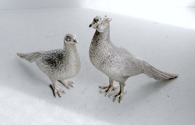 Pair of Silver Pheasants - Cock and Hen