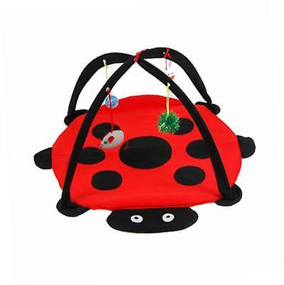 Play Mat Pet Kitten Padded Bed Cat Play Center with Hanging Toy Balls and Mice
