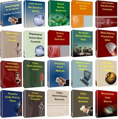 130 Different PDF Ebooks How to Make Money+ learn ebay with master resell rights