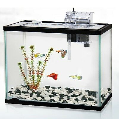 Classica 30L 30 Litre Aquarium Fish Tank Starter Kit System Gold Goldfish Filter