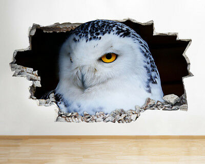 Wall Stickers Snow White Barn Owl Cute Hall Smashed Decal 3D Art Vinyl Room G260
