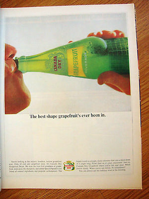 1964 Canada Dry Soda Ad The best Shape Grapefruit's ever been In