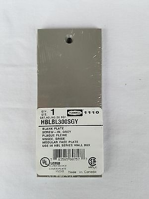 HBLBL300SGY Hubbell Faceplate Screw Mount Blank, Gray