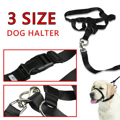 Dog Halter Halti Training Head Collar Gentle Leader Harness Black M L XL AU