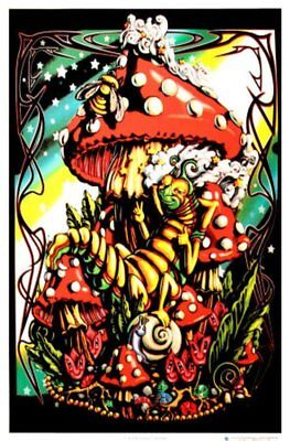 Mushroom Caterpillar - Blacklight Poster - 23X35 Flocked 1834