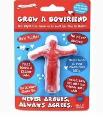 Grow Your Own Boyfriend Secret Santa Stocking Filler Idea Joke Gift UK SELLER