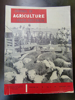Old South Australian Agriculture Farming Journal January 1959