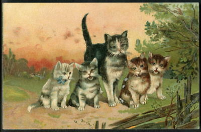 CATS. Hoffmann's Rice Starch. Advertising give-away postcard c1904