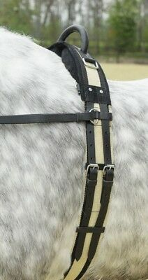 Busse Lunging Belt with Hand Grip Longe Strap Surcingle Shetty Thoroughbred/WB
