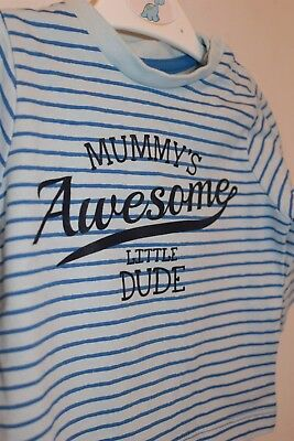 Baby Boys Nutmeg Blue striped Long Sleeved Top 0-3 Months