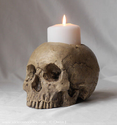 HUMAN SKULL CANDLE HOLDER, full size realistic, polished bone effect