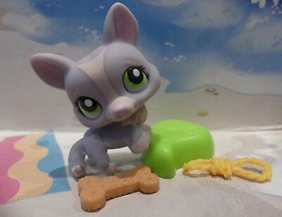 Littlest Pet Shop992dachshundpuppy Doggreen Eyeshot Dog Bun