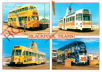 Picture Postcard::Blackpool Trams (multiview)