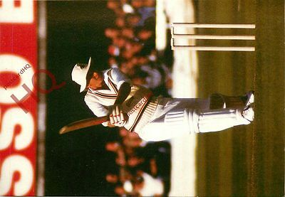 Picture Postcard-:Cricket, David Gower