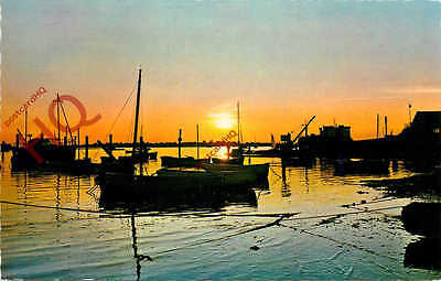 Picture Postcard-:Eventide, Sunset [Constance]