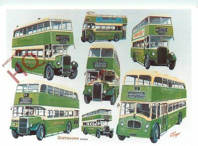 Picture Postcard:-SOUTHDOWN BUSES [MAYFAIR]