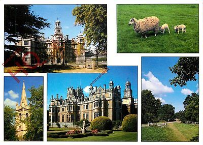 Picture Postcard-:Thoresby Park (Multiview)
