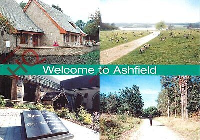 Picture Postcard: Ashfield (Multiview)