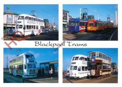 Picture Postcard: BLACKPOOL TRAMS (MULTIVIEW)